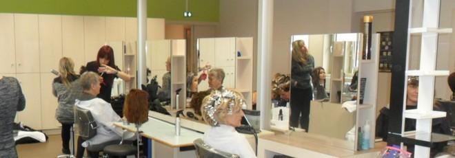 Cfa municipal de belfort le salon de coiffure p dagogique - Salon de coiffure coloration vegetale ...